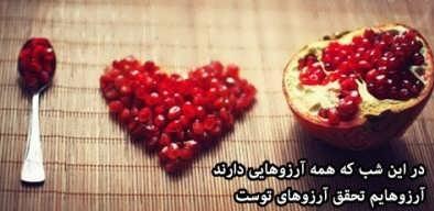 Greeting-the-love-of-Yalda-night-7