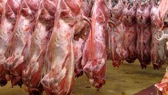 خبرهای جدید از قیمت گوشت | قیمت گوشت به کجا رسید ؟