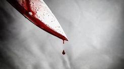 قتل دوباره با داس در تالش / سناریو مرگ رومینا تکرار شد