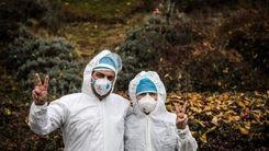 چرا نباید ماسک را در طبیعت رها کرد ؟