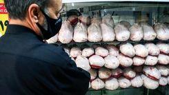 قیمت مرغ دوباره گران می شود | کمبود جوجه دردسر ساز شد