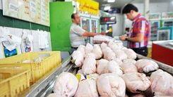 قیمت مرغ و جوجه چقدر شد؟