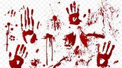 قتل در باغ های شمیرانات محله را ترساند/ ماجرا چیست؟